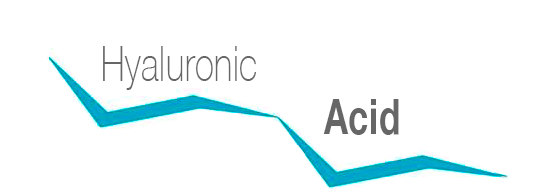 Acido-ialuronico-logo_eng